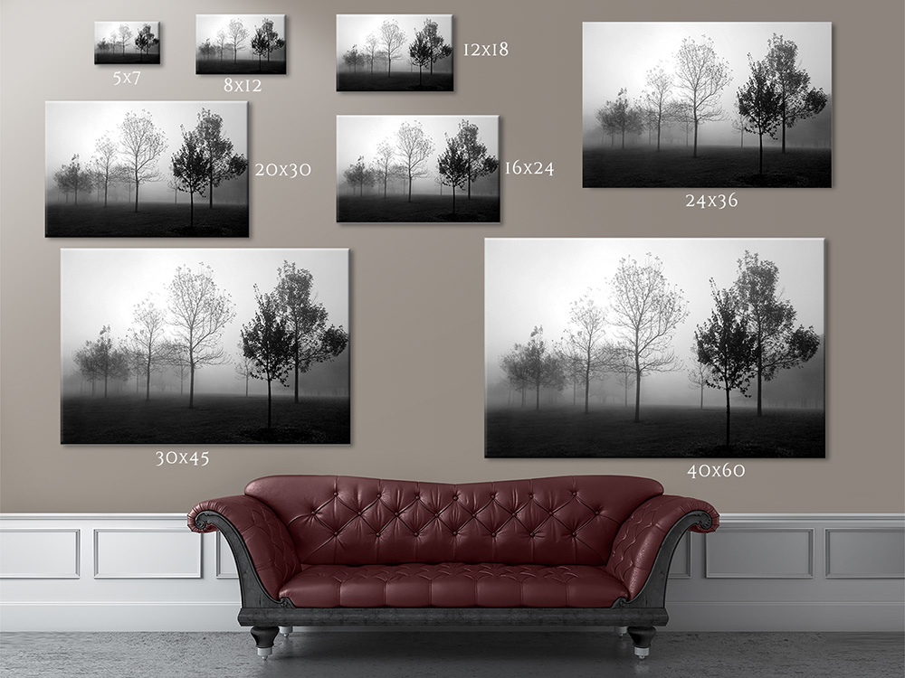 Print Sizes And Prices Cleary Fine Art Photography